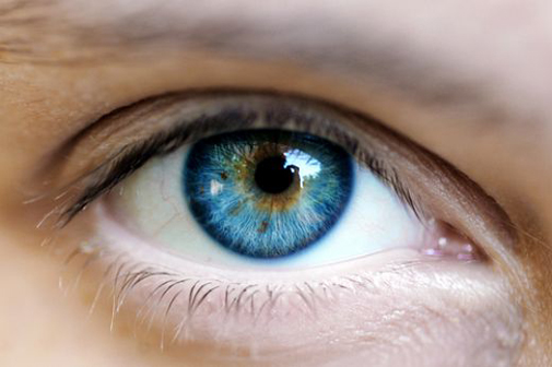 Oči varujemo in ščitimo