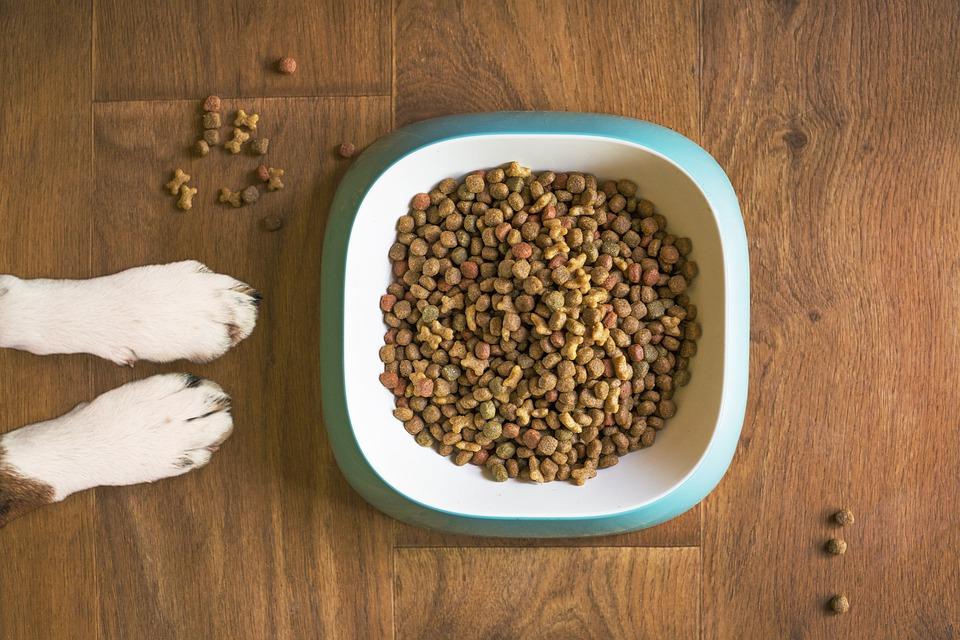Hrana za pse prilagojena za vse pasme in starosti